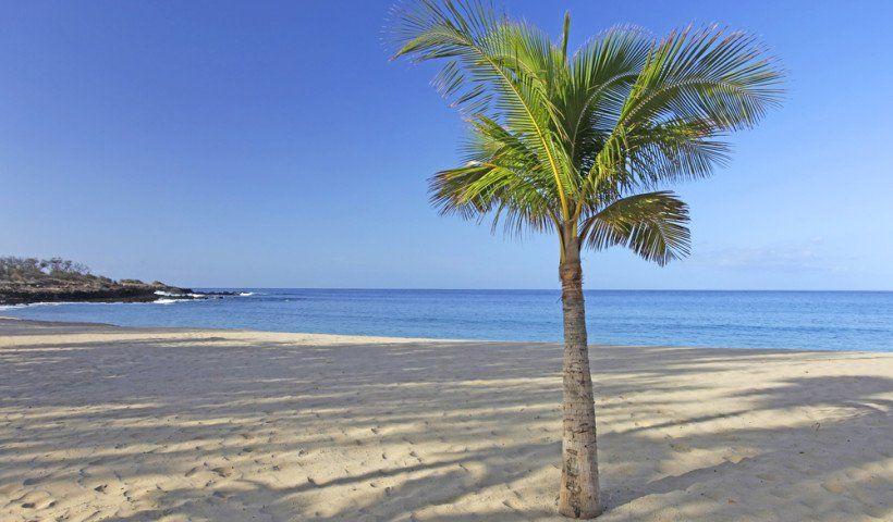 Papúa Nueva Guinea / Esta es otra parada mágica a lo largo de las rutas del Pacífico Sur que pasan por las islas de Hawai. Papúa Nueva Guinea fue famosa en su día por sus caníbales, pero esos días han quedado atrás. Ahora es un lugar muy acogedor, con un volcán activo que hace que cada visita sea muy emocionante. Los pasajeros de los cruceros que paran aquí también descubrirán que se trata de un paraíso tropical lleno de belleza natural.