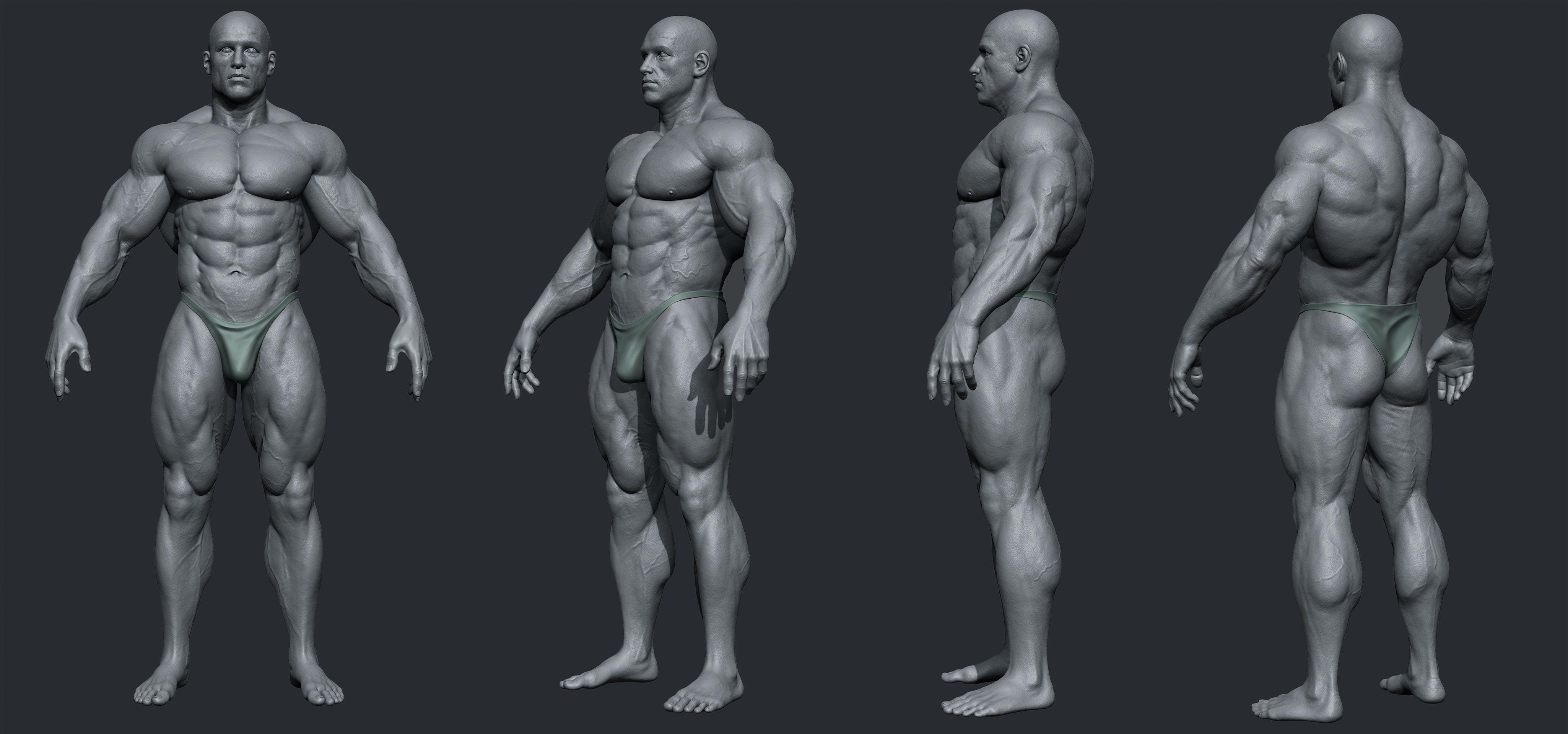 Male Body Builder | anatomy+ tutorial | Pinterest