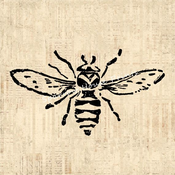 Vintage Print Bee Wall Art Home Decor Antique Bee Print With
