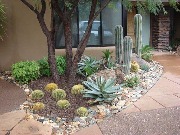 Lululandscaping Com Arizona Backyard Landscaping Desert