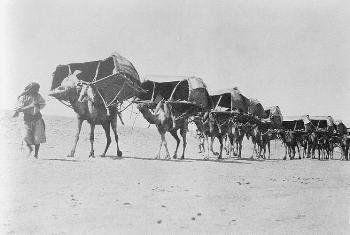 Pin On Hejaz الحجاز