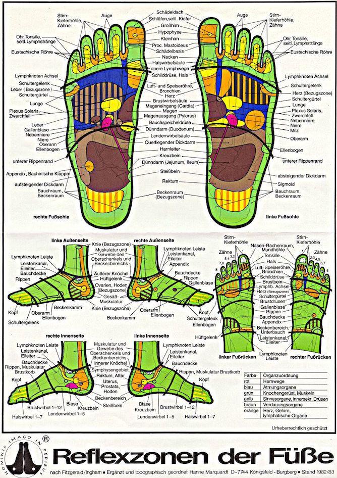 Fußreflexzonenmassage: Karte der Reflexzonen | Massage & Reflex ...