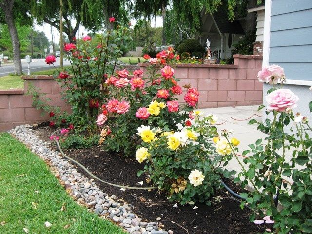 small rose garden in front yard rose garden design on beautiful front yard rock n flowers garden landscaping ideas how to create it id=35074