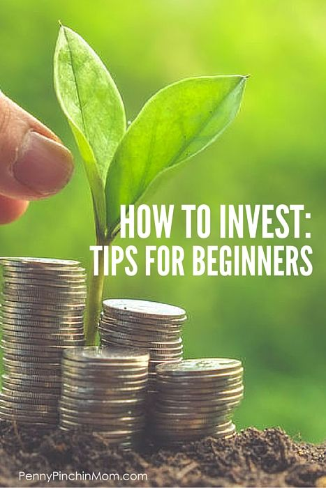 How Much Money To Invest For Beginners