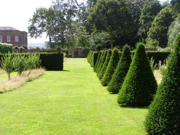 Garden hedge ideas garden hedges garden hedge ideas workwithnaturefo