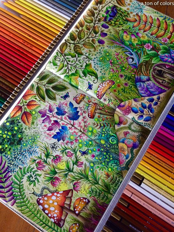 Coloring Inspiration Coloring Book Artist Patrik Giacomelli Forest Coloring Book Enchanted Forest Coloring Book Enchanted Forest Coloring