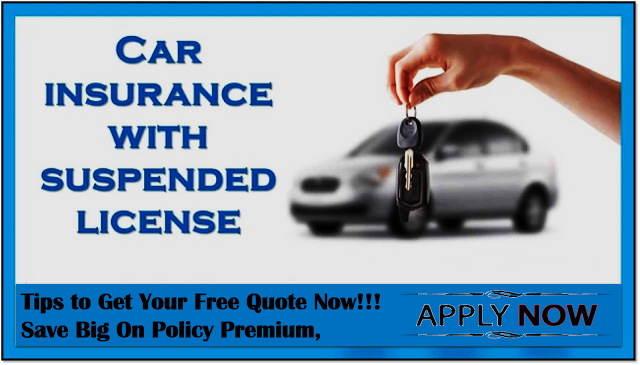 Auto Insurance Quotes Online Adorable Car Insurance With Suspended License Online Cheap Auto Insurance . Design Decoration