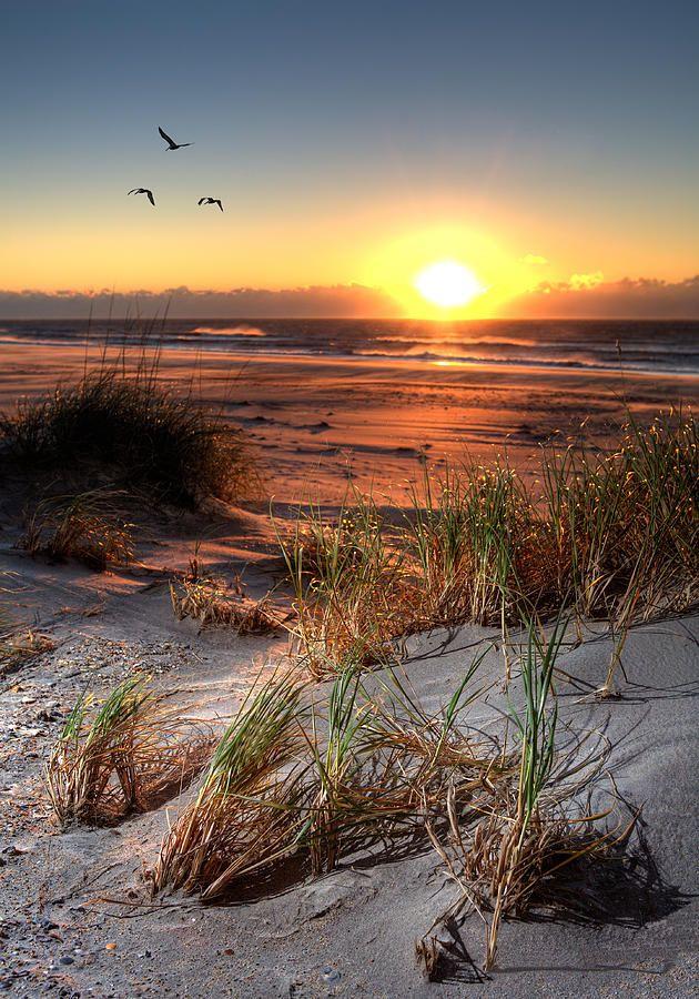 Sunrise On Ocracoke Island North Carolina Outer Banks Ocracoke Island Beautiful Landscapes Sunrise