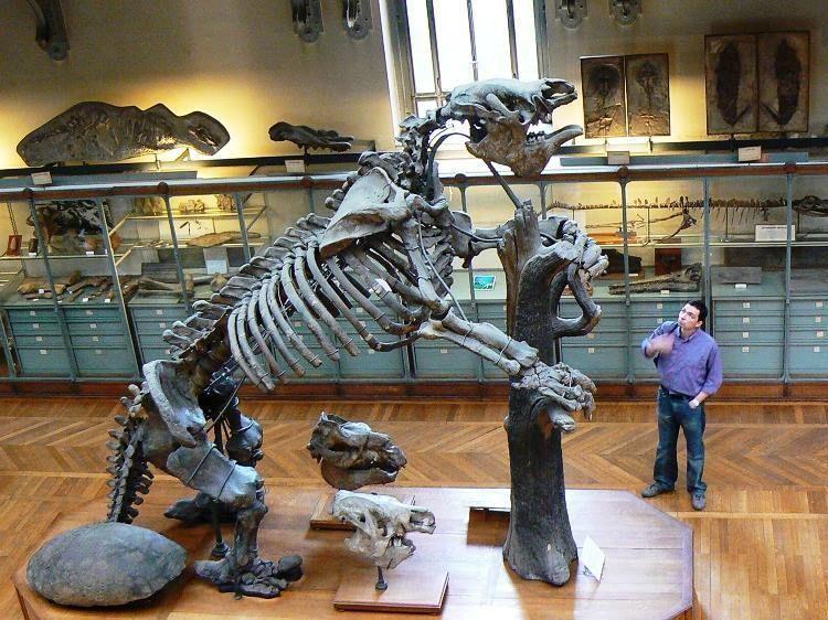 10 Terrifying Prehistoric Creatures — That Weren't Dinosaurs #prehistoriccre...  #Creatures #Dinosaurs #Prehistoric #prehistoriccre #Terrifying #Werent #prehistoriccreatures