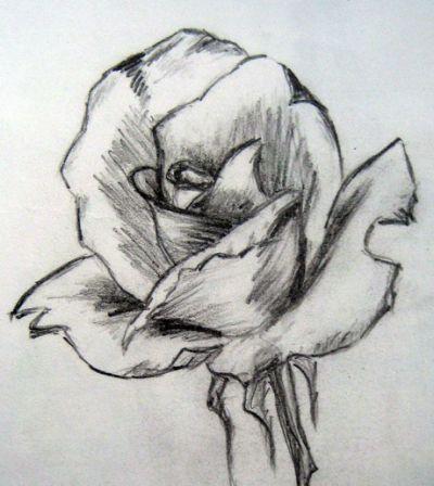 Einfache Bleistiftzeichnungen Von Blumen Bleistiftzeichnungen