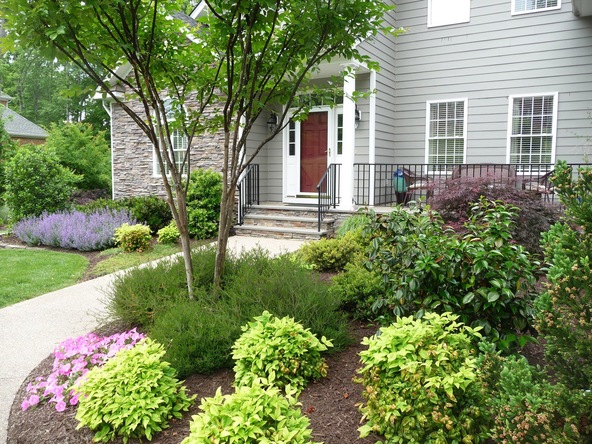 May garden. Nepeta. | Small front yard landscaping ...