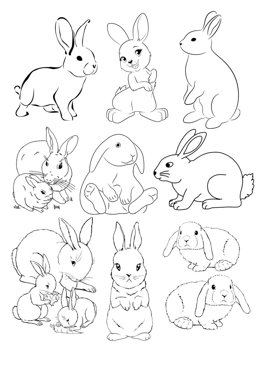 Раскраска для детей. Много зайцев. Милые зайки. #заяц # ...