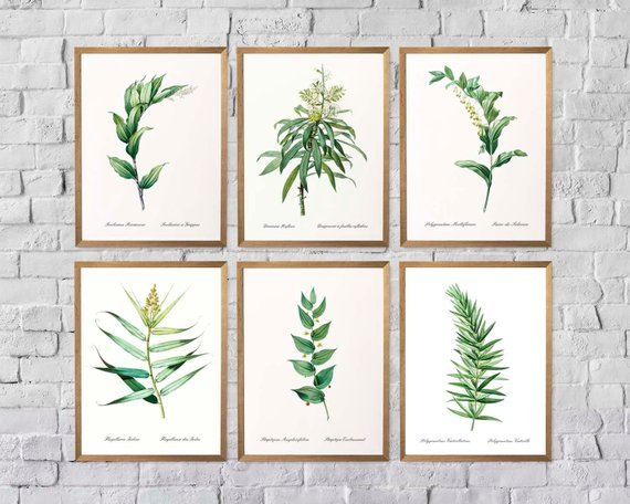 Leaf Prints Vintage Green