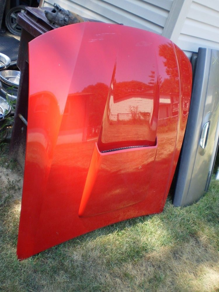 1999 2004 Ford Mustang Gt Hood Bonnet W Scoop Oem 99 00 01 02 03 04 302 351 Ford Ford Mustang Gt Ford Mustang Mustang Gt