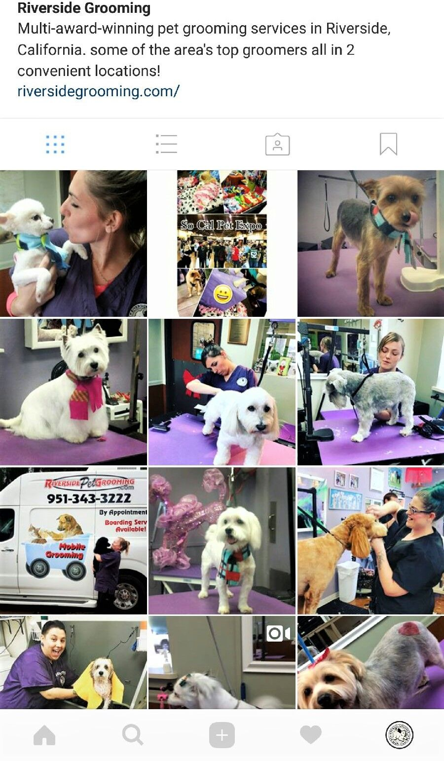 Follow Us On Instagram Riverside Grooming We Would Love To Follow You Back Service Animal Groomer Riverside