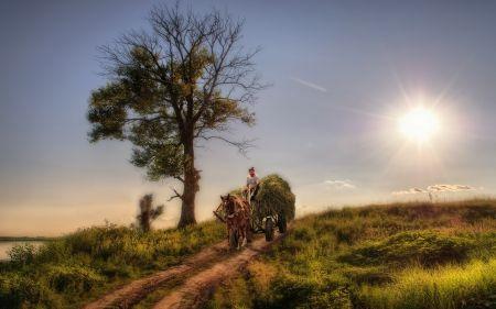 幻想的な田園風景のHDR その他 自然 高解像度で壁紙