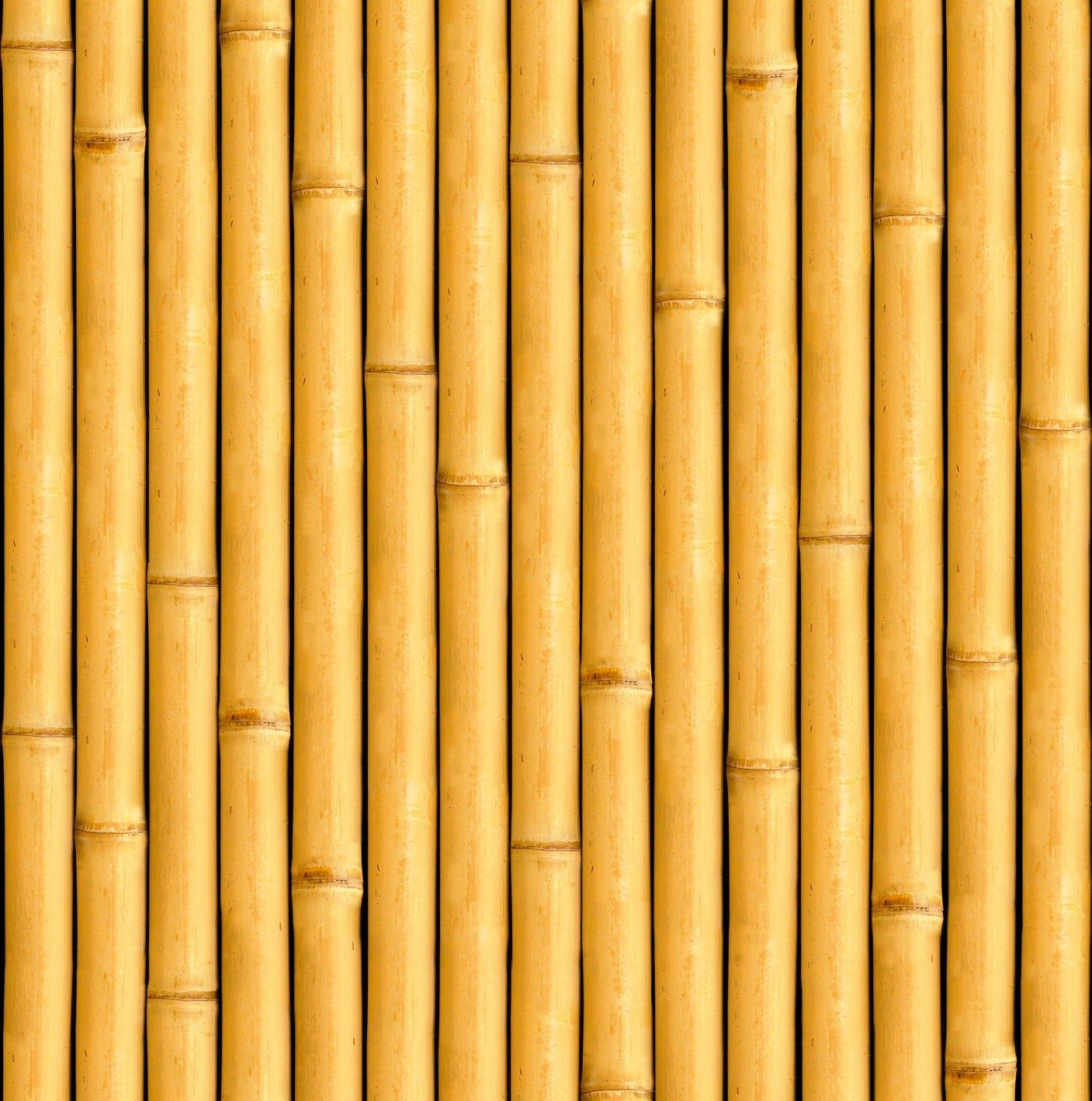 TEXTURE SEAMLESS - BAMBU\' | Texturas | Pinterest | Woods, Walls and ...