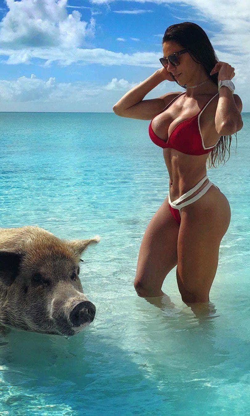 Sexy And Funny Video : funny, video, Bikini, Girls