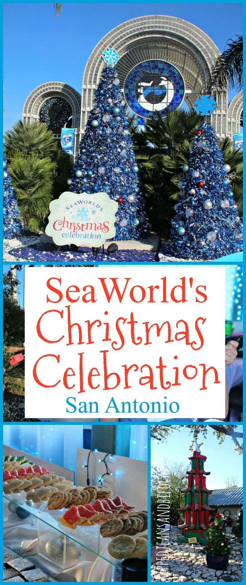 SeaWorld's Christmas Celebration Sea world, Best family