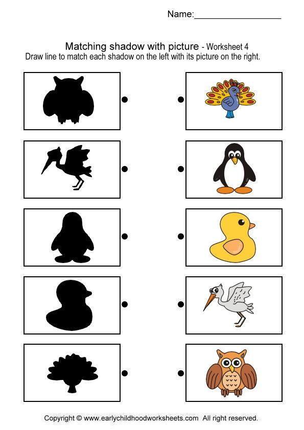 Schaduwdieren! 4-5 | matching | Preschool worksheets, Worksheets ...