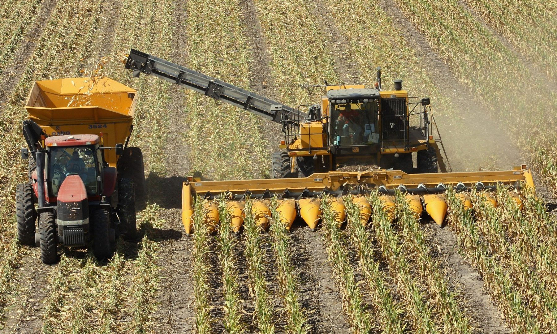 Ploeger Is A Specialist In Harvesting Technology And Manufactures Machines That Correspond Entirely To The Customer S Needs Farm Equipment Machine Farm