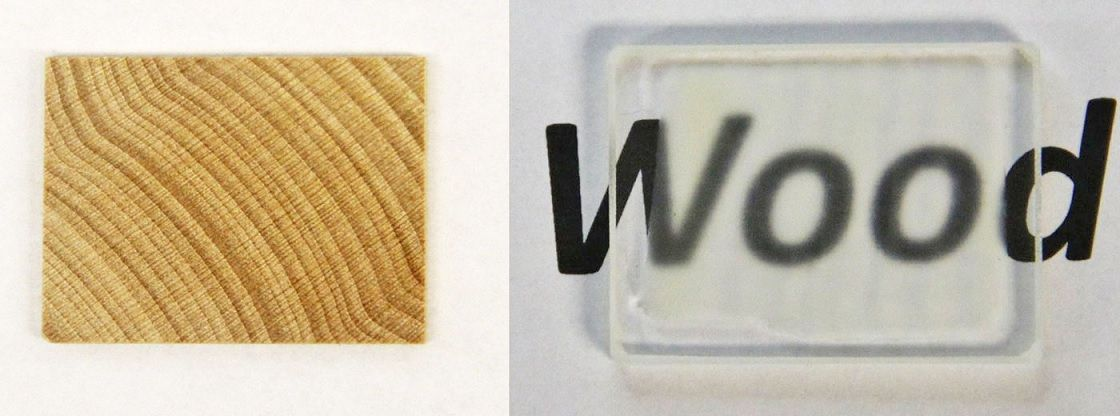 Investigadores De La Universidad De Maryland Lograron Crear Un Bloque De Madera Transparente Wood Glass Transparent