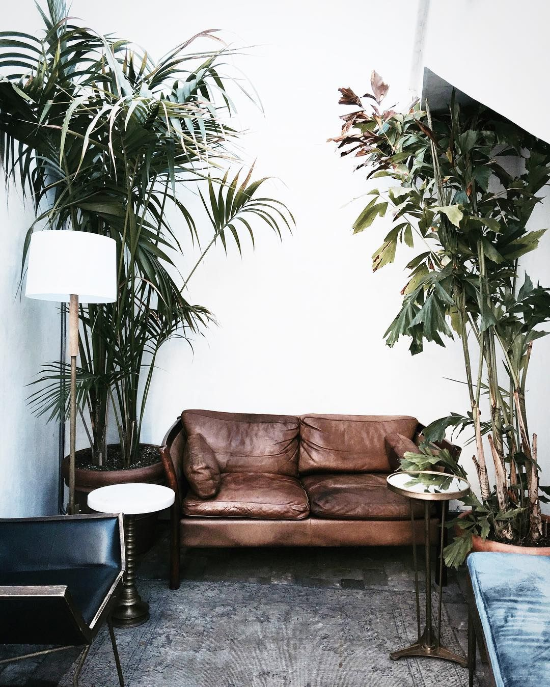 Boho urban jungle interieur met vintage leren bank   TREND  Urban Jungle   Pinterest   Boho