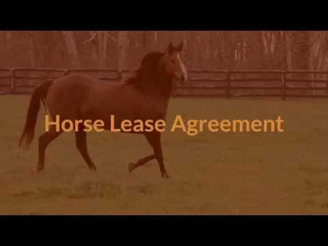 Horse Lease Agreement  Liability Waiver    Horse