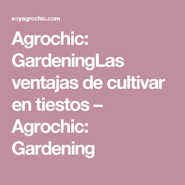Agrochic: GardeningLas ventajas de cultivar en tiestos – Agrochic: Gardening