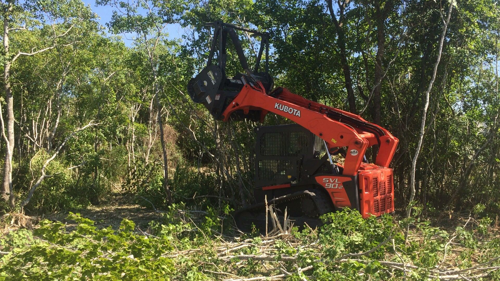 Forestry mulching lot land clearing hydro ax underbrushing