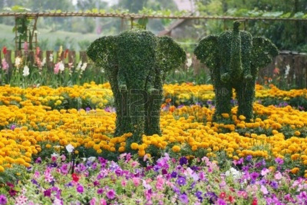 World Beautiful Flower Gardens Beautiful Flower Gardens Beautiful