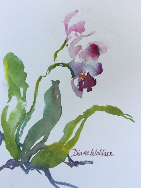 Buy Zen Orchid #4, Watercolour by Diane Wallace on Artfinder. Discover thousands of other original paintings, prints, sculptures and photography from independent artists.