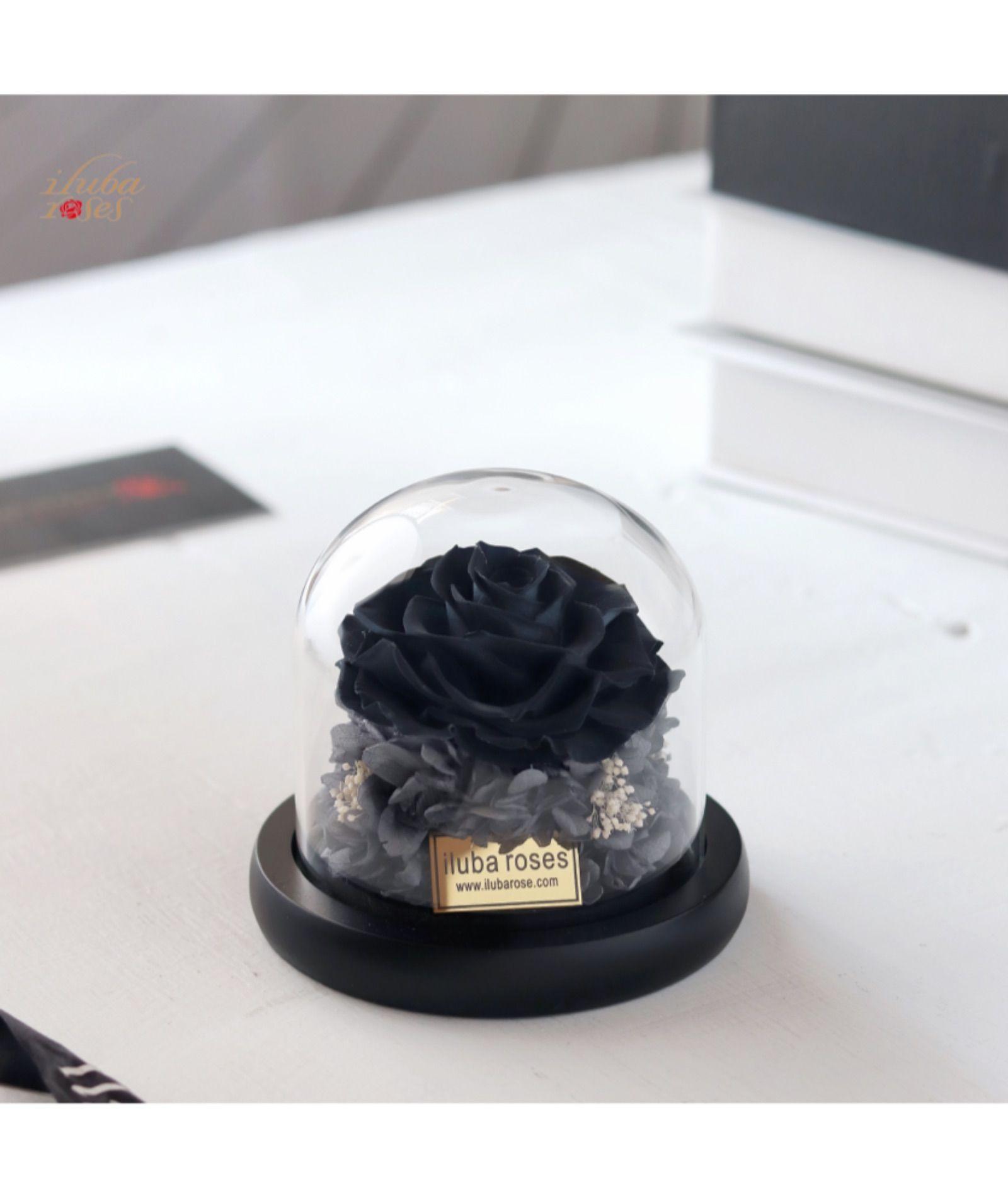 وردة ايلوبا روز اسود طبيعية دائمة داخل فازة زجاجية Food Desserts Cake