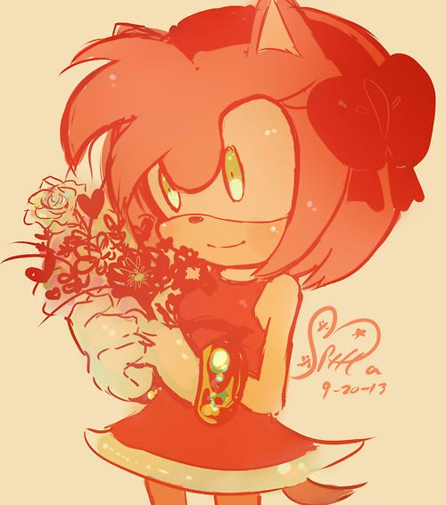 amy rose oh for the love of amy rose pinterest amy rose amy