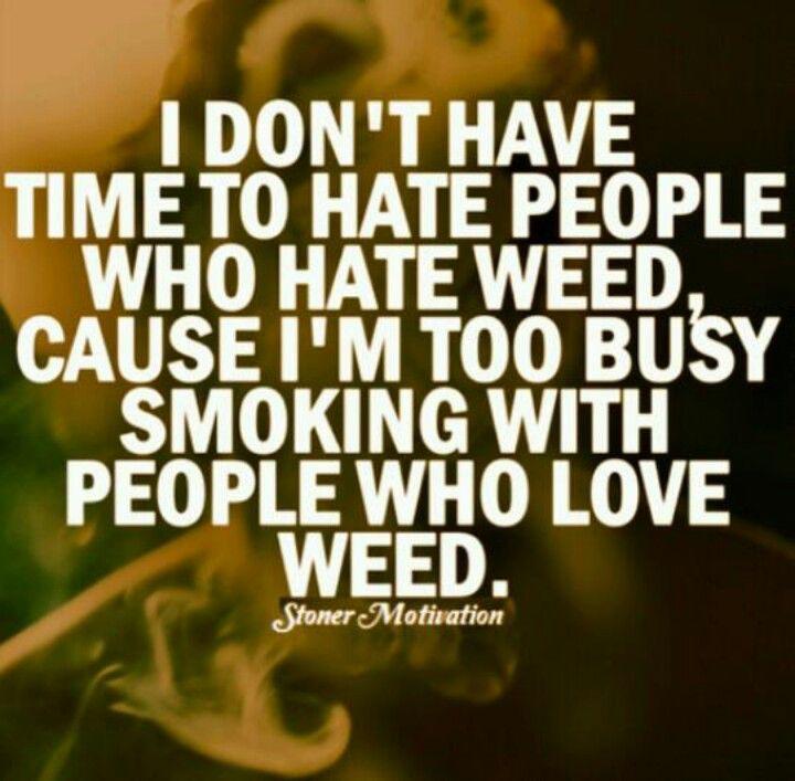 Lyric ganja farmer lyrics : Im too busy smoking with people who love weed. | Stoner Island ...