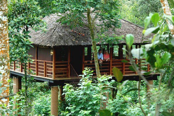 Romantic Honeymoon Places In Kerala Treehouse Stay For A
