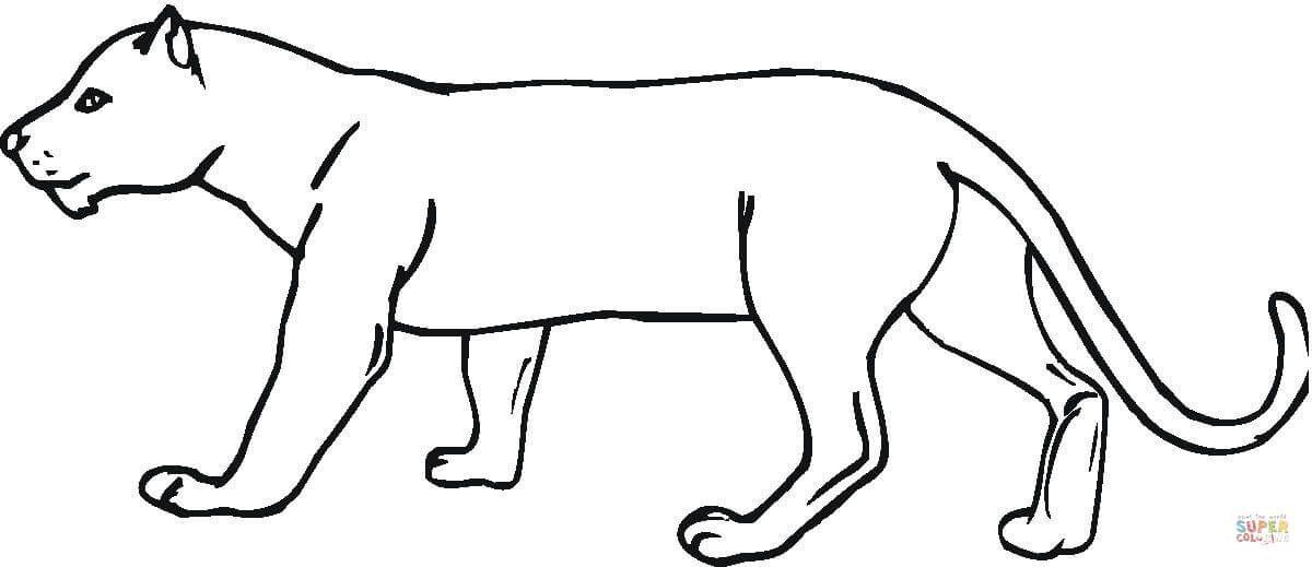 Ausmalbild Panther 01 Art Dessin Dessin Art