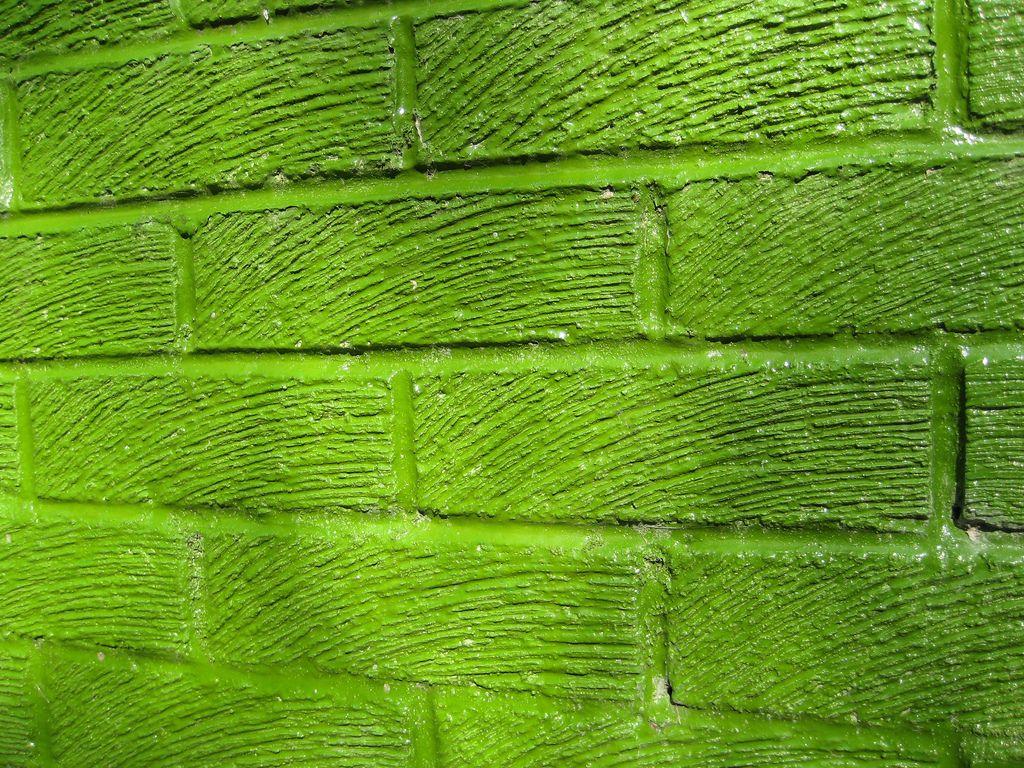 Grüne küchenwand ~ Grüne wand.jpg jpeg grafik 1024 × 768 pixel skaliert 80
