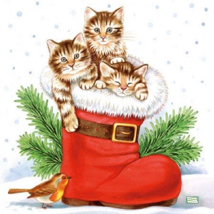 https://galerie.alittlemercerie.com/galerie/sell/22226/serviettage-4-serviettes-papier-les-chats-105-8680403-105-jpg-d45d6-254f8_big.jpg