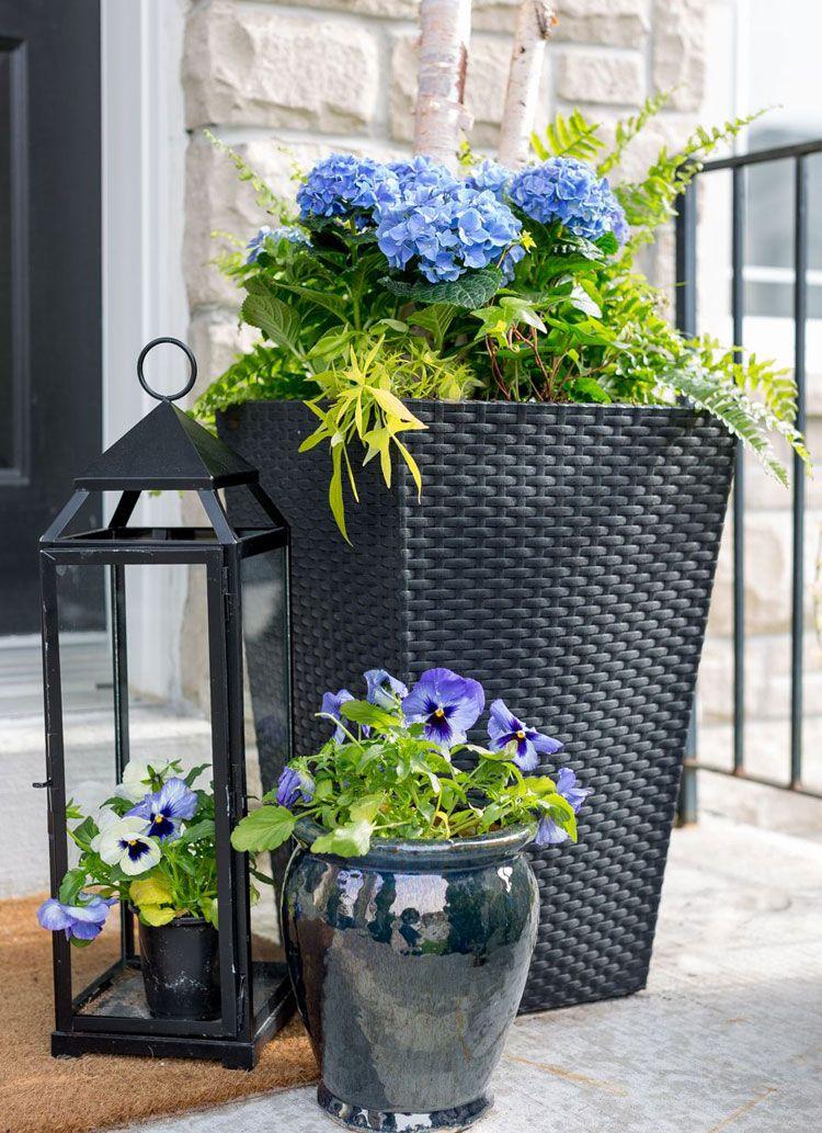 67 Best Front Door Flower Pots Pretty Porch Planters 2020 Guide