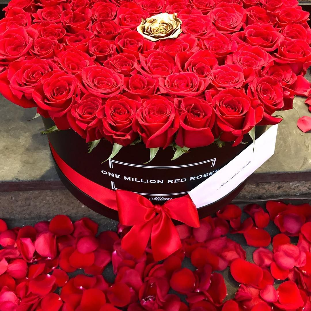 Image result for Flowers: The Best Gift For Your Loved Ones