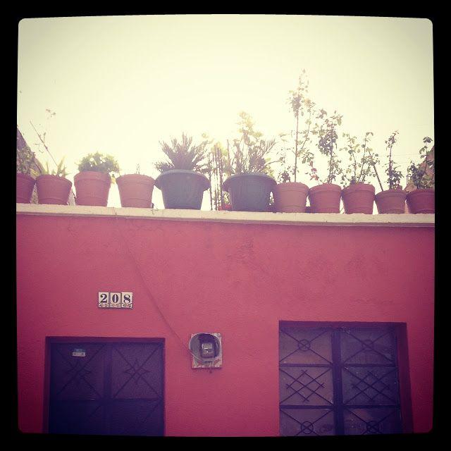 Coffee Break: Instagram Moments in Coffee Break. Guadalajara mexico
