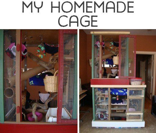 My homemade cage