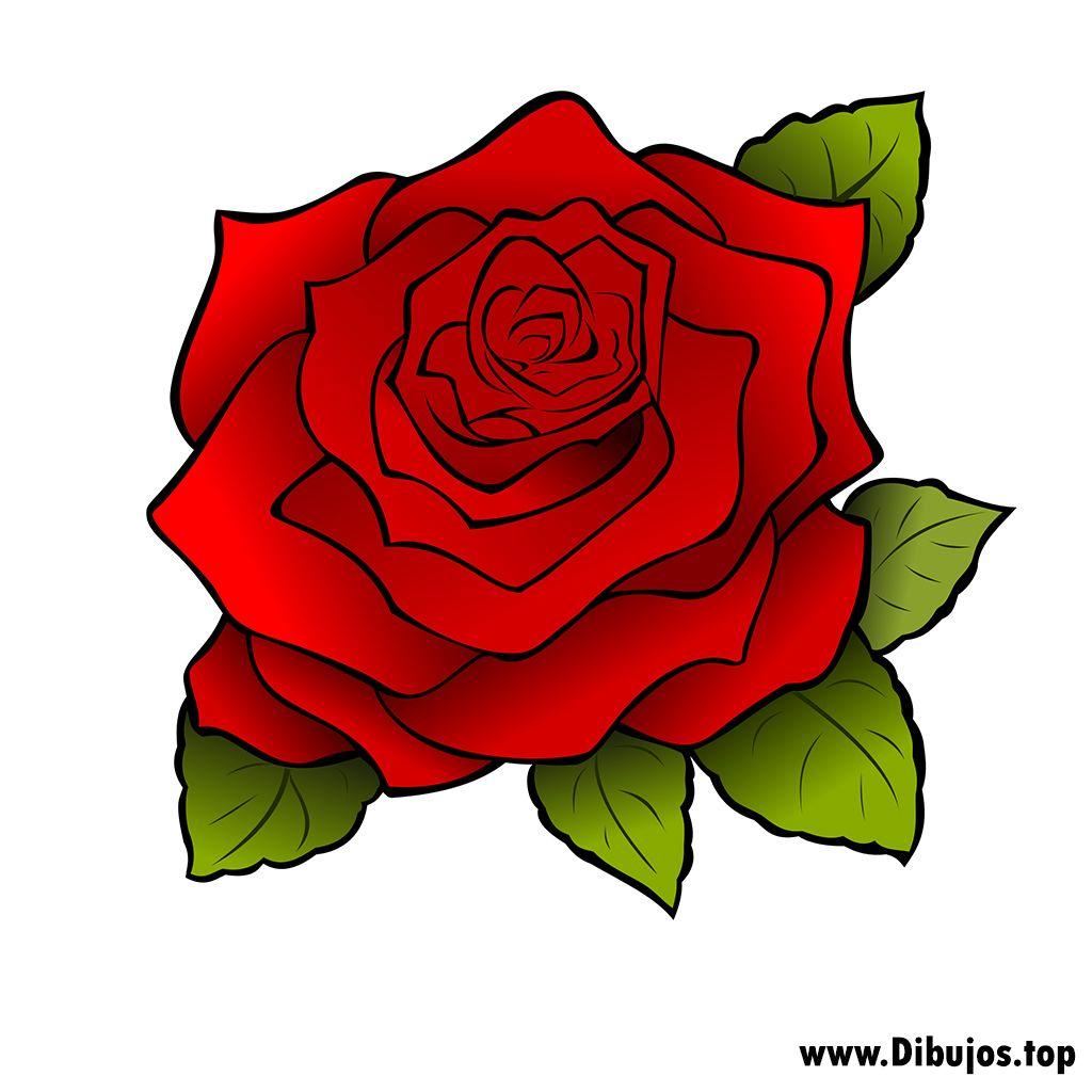 dibujo de una rosa  Buscar con Google  flores  Pinterest