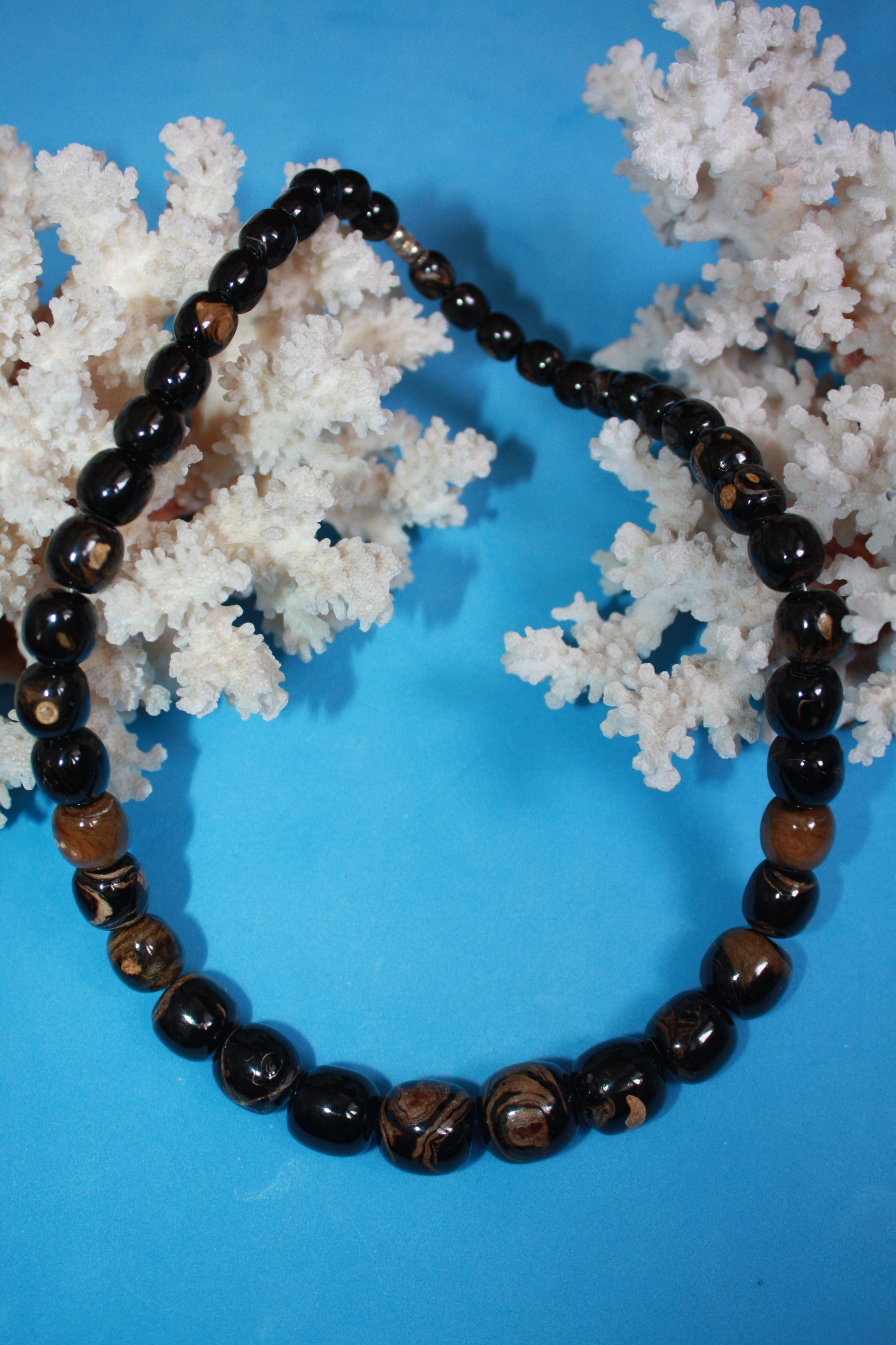 @BlackCoral4you Black and Brown Coral / Coral Negro y Marron  http://blackcoral4you.wordpress.com/