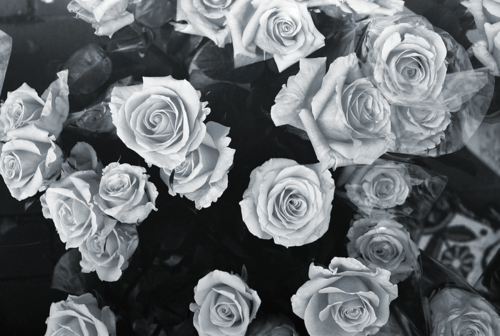 black and white hipster tumblr backgrounds Google Search