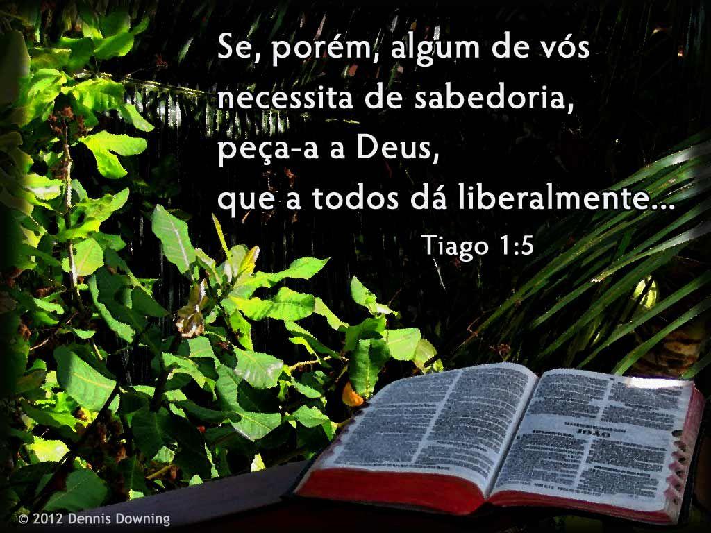 Tiago 1:5 | Fé | Palavras da bíblia sagrada, Palavras