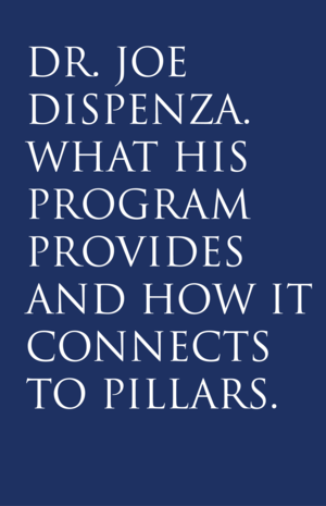 www.pillarsofsuccessco.com   A program created by Dr. Joe Dispenza to help you deepen your awareness of your own patterns and how to change them