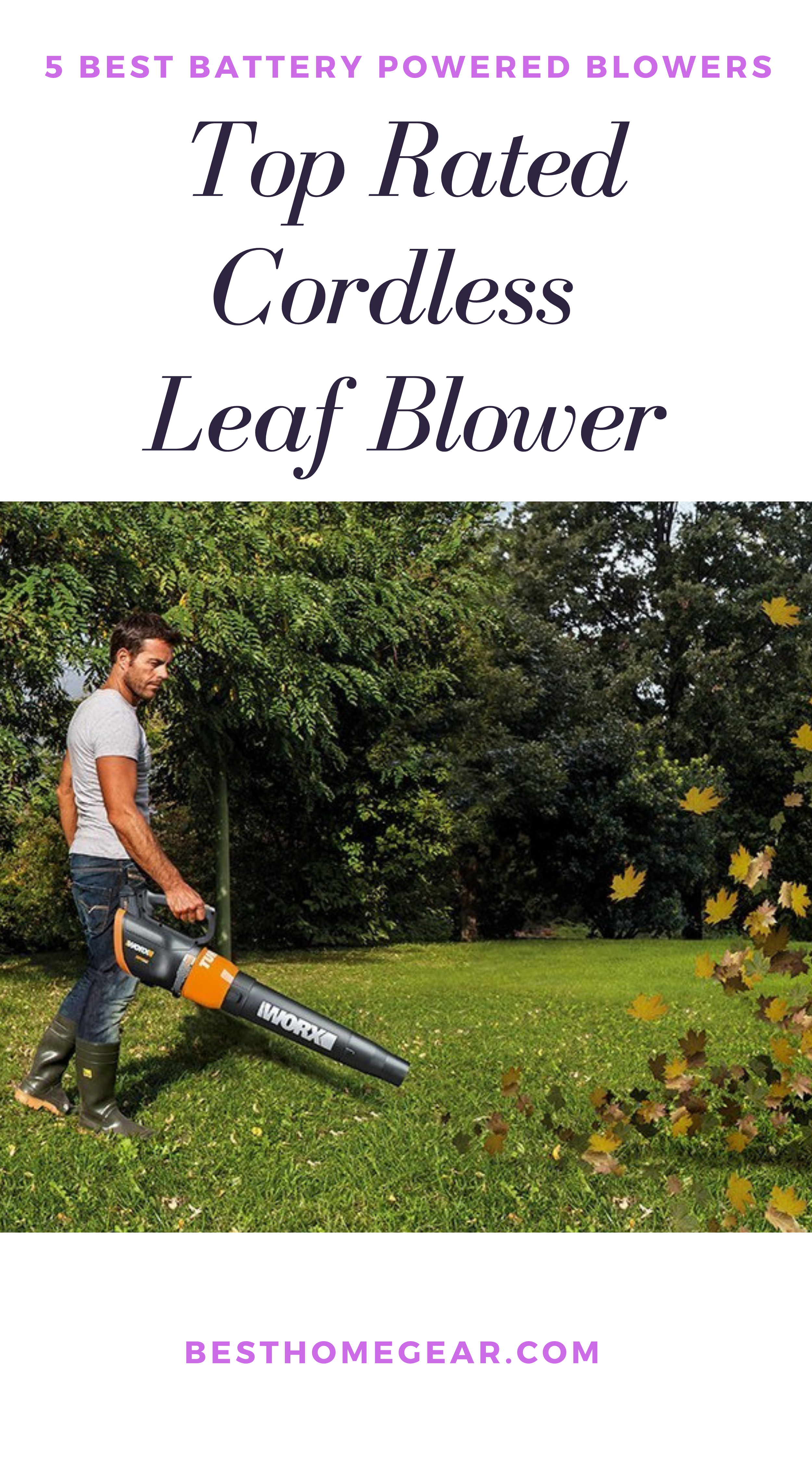 Best Cordless Leaf Blowers In 2020 Reviews Blowers Professional Landscaping Garden Care