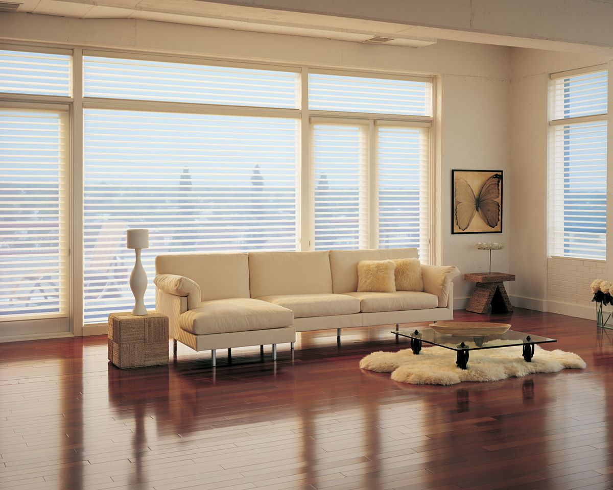 Hunter Douglas is offering 100 dollar MailIn Rebates and